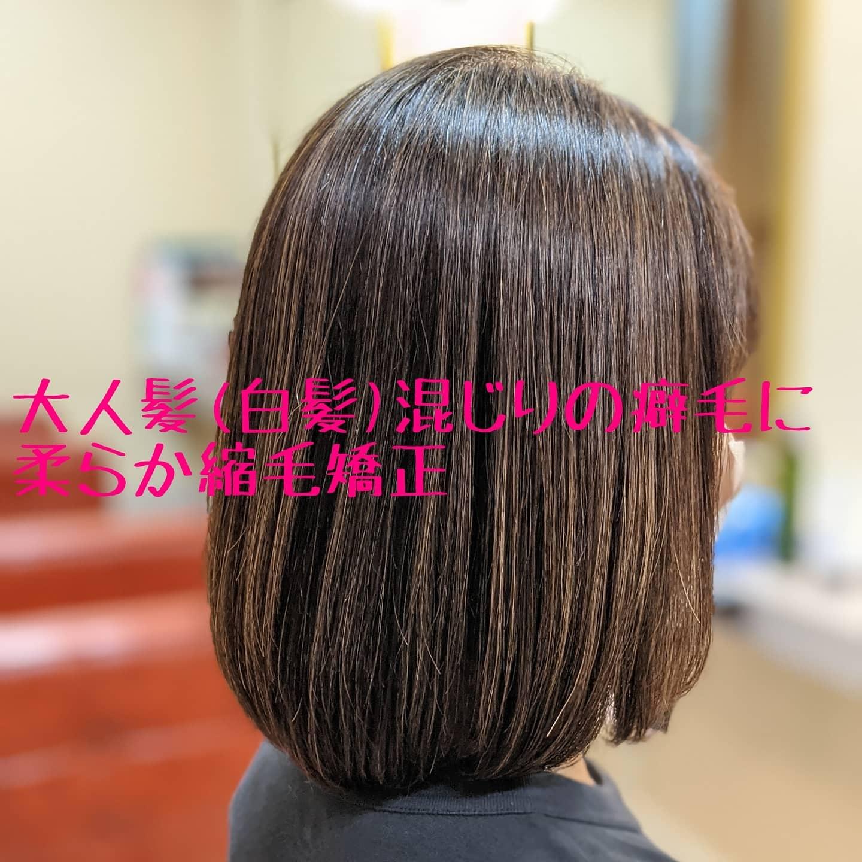 大人髪(白髪)の縮毛矯正
